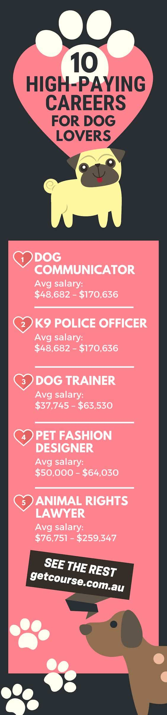 Dog Training Courses Will Lead You to These High-Paying Jobs